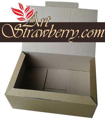 Kotak sepatu (29x19x11)cm